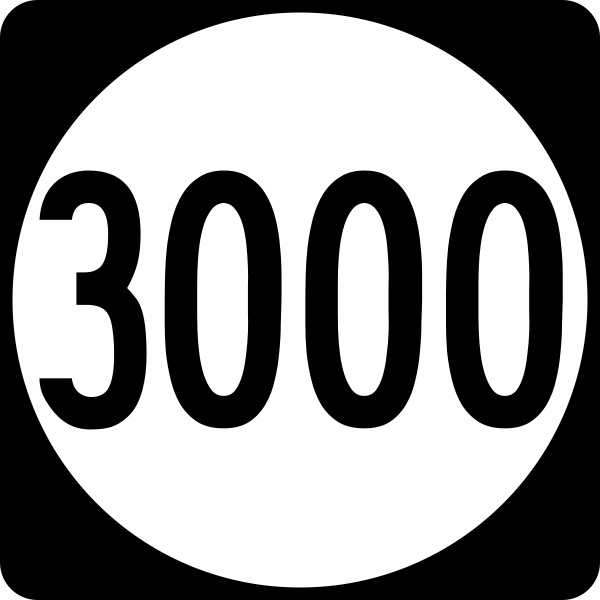 3000 Coaches